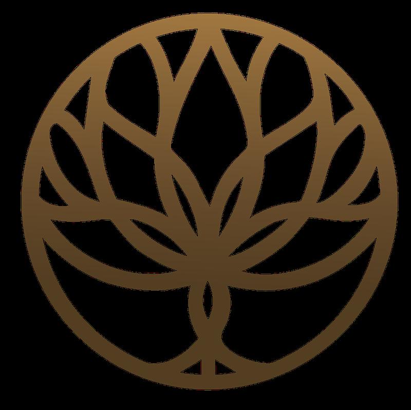 the practical naturopath icon