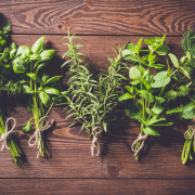 Healing power of herbs